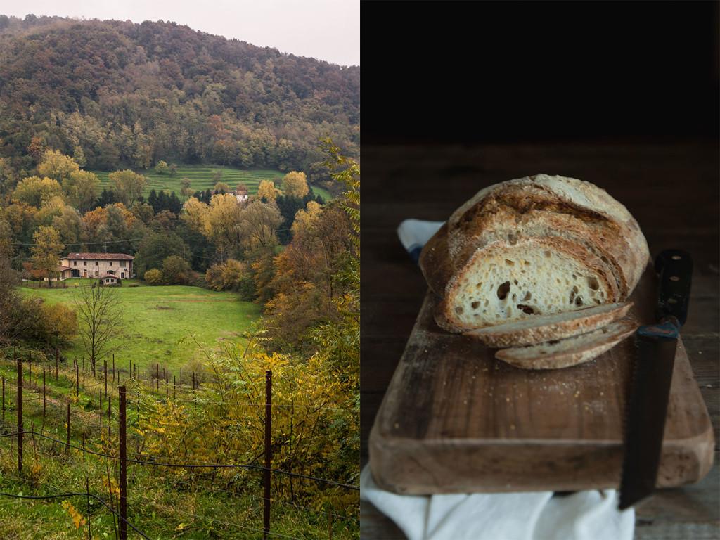 Pane-di-polenta-_-autunno