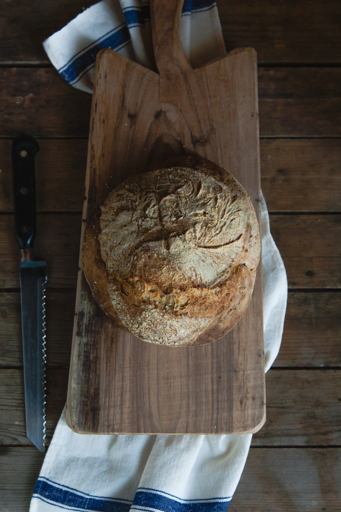 pane di polenta-10