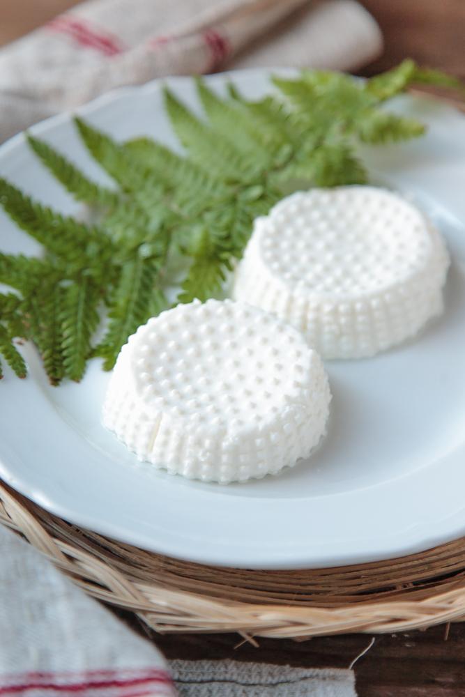 formaggio raviggiolo fatto in casa-7
